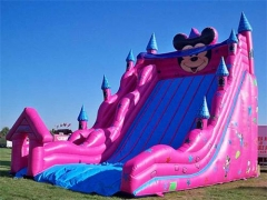 Mickey Mouse Inflatable Slide